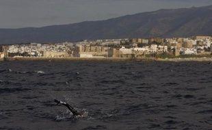 """La petite ville andalouse de Tarifa, paradis des véliplanchistes et """"kite-surfers"""", fait l'objet d'un projet de construction qui fait polémique: la mairie veut y faire bâtir 350 maisons et des hôtels offrant 1.400 places. En tout, 84.000 mètres carrés construits sur un terrain de 70 hectares."""