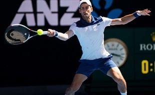 Novak Djokovic, à l'Open d'Australie