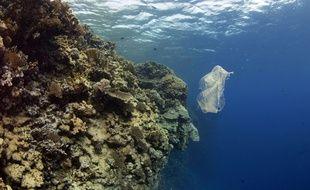 «200 millions de tonnes de déchets plastiques ont été rejetées dans les océans depuis 1950», évalue la scientifique Alexandra Ter Halle.