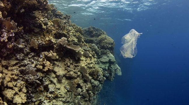 Les microplastiques présents dans l'Arctique viennent de nos vêtements