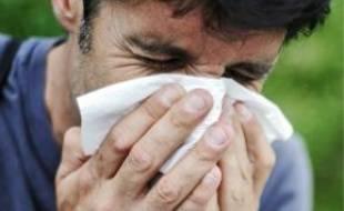 L'allergie aux graminées peut entraîner migraines et éternuements en salve.