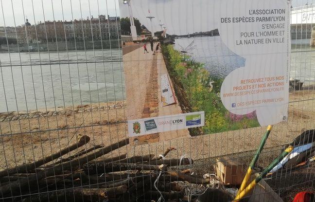 L'association Des espèces parmi'Lyon veut recréer une réserve animale et végétale le long des berges du Rhône à Lyon.
