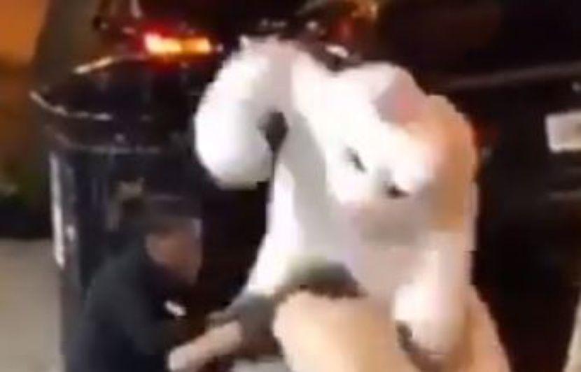 VIDEO. Etats-Unis: Un homme déguisé en lapin de Pâques défend une femme au cours d'une bagarre
