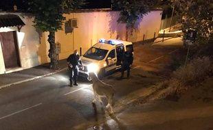 L'âne Christophe a été récupéré par les policiers dans le centre-ville de Grasse.