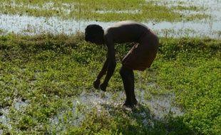 En Inde, 80% des eaux usées finissent non traitées dans les rivières et les nappes phréatiques, principale source d'eau potable pour des millions de gens dans ce pays, a révélé mardi une étude publiée par une ONG locale.