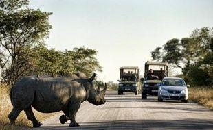 Un avion d'observation doté de technologies militaires va être mis à la disposition du parc national Kruger, en Afrique du Sud, pour tenter de stopper l'explosion du braconnage des rhinocéros, ont annoncé mardi les parties prenantes devant la presse.