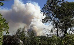 De nombreux incendies cet été en France ont été déclenché par les pyromanes. (illustration)
