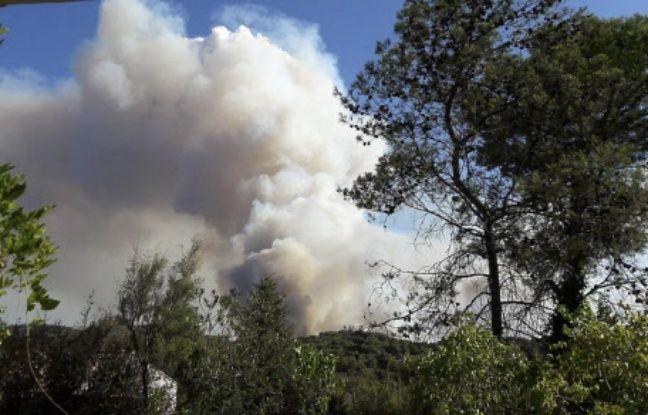 Pyrénées-Orientales: Un homme de 20 ans reconnaît être l'auteur de 12 départs de feu cet été