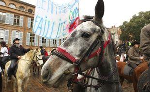 Environ 600 cavaliers en colère ont manifesté à pied, à cheval ou à poney à la main, pour protester contre la future hausse de la TVA pour les centres équestres qui menace selon eux 6000 emplois en France, à Toulouse le 12 novembre 2013.