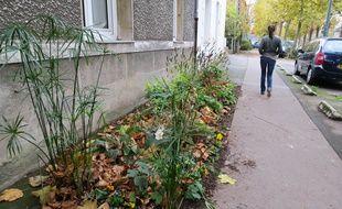 Quartier Sainte-Anne, la ville de Nantes a répondu à la demande de certains habitants en remplaçant une partie du trottoir par un parterre.