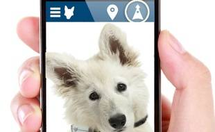 Ce collier GPS intègre une carte SIM et permet de géolocaliser son animal préféré à tout moment depuis un smartphone.