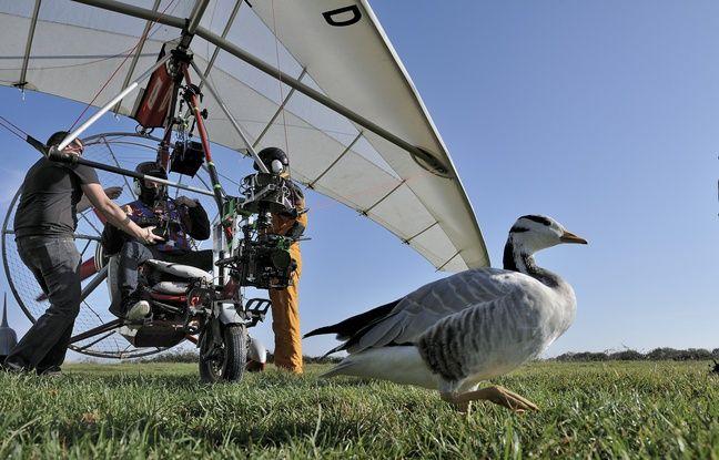 De nombreuses technologies ont été utilisées dans ce film pour suivre les animaux sauvages.