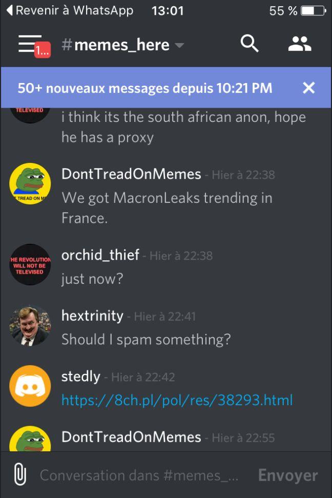 Capture d'écran d'un groupe de discussion sur l'application Discord entre partisans de Marine Le Pen et internautes anglo-saxons.