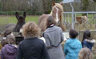 Des enfants avec l'âne et la jument de la ferme.