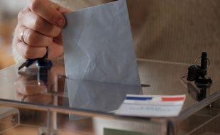 Vote (illustration)