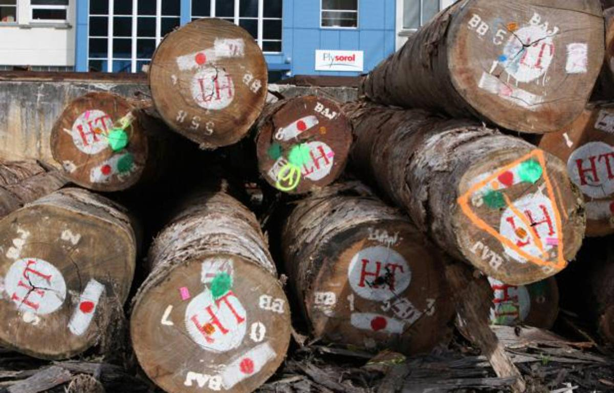 A l'usine Plysorol de Lisieux en 2010. – KENZO TRIBOUILLARD/ AFP