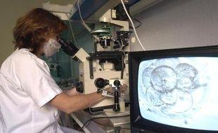 Un technicienne du service de biologie de la reproduction de l'Hôpital de la Conception à Marseille observe au microscope, le 4 décembre 2000, la division cellulaire d'un embryon au cours d'un programme de procréation médicale assistée.