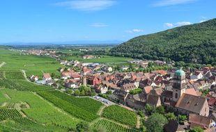 Le vignoble alsacien, ici avec une vue sur Kaysersberg.