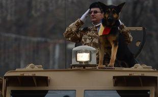 Une parade militaire roumaine avec le chien militaire Max, le 1er décembre 2012 à Bucarest, en Roumanie.