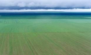 Les champs de soja ne cessent de s'étendre dans les plaines fertiles d'Amérique du sud: la récolte 2013 a battu des records pour répondre à la demande en forte hausse de la Chine et de l'Europe.