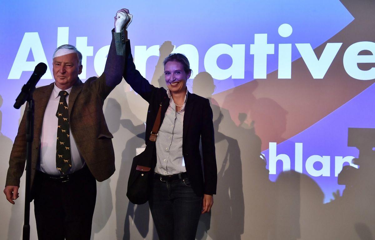 L'AfD, le parti populiste d'extrême droite en Allemagne, va faire son entrée au Bundestag. – John MACDOUGALL / AFP