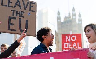 Les partisans du Brexit manifestent à Londres le 27 février 2019.
