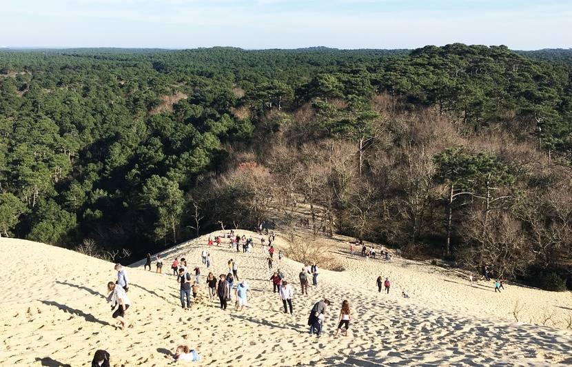 Bassin d'Arcachon : Pourquoi la vague d'expropriations sur le domaine de la Dune du Pilat va-t-elle se poursuivre ?