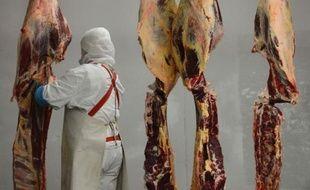 Le scandale européen de la viande de cheval faussement estampillée boeuf dans des plats préparés, s'est étendu jeudi à l'Allemagne avec un premier cas avéré dans des lasagnes surgelées et a pris une dimension sanitaire au vu de tests effectués en Grande-Bretagne.