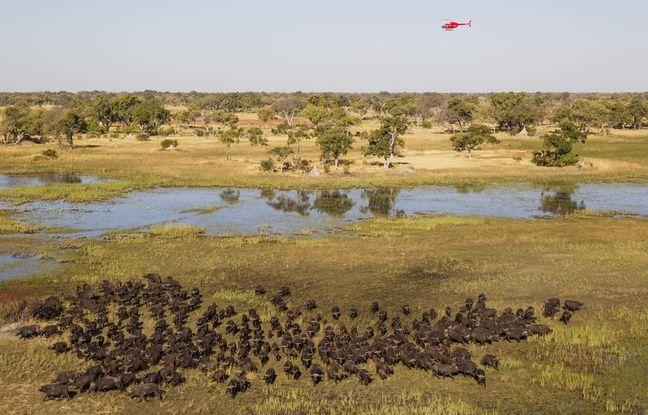 Mondial du tourisme: Pourquoi l'Afrique est une destination en plein essor