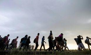 Un groupe de migrants quitte la ville serbe de Kanjiza à la frontière avec la Hongrie, le 2 août 2015