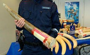 La douane a notamment saisi 212 kg d'ivoire dans une entreprise de la région parisienne