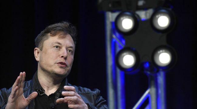 Elon Musk poste une vidéo d'un singe jouant à un jeu vidéo via un implant