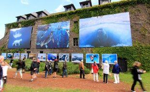 Les images exposées au festival photo de La Gacilly sont tirées en grand format et présentées en extérieur.