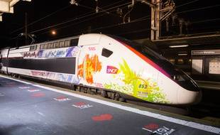 Le nouveau TGV l'Océane en gare Matabiau.