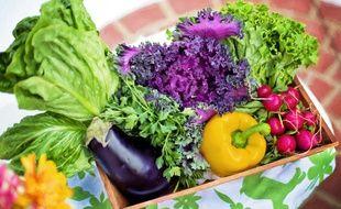 Illustration de légumes.