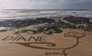 L'artiste réalise des oeuvres, façonnées au râteau, sur la plage de Brétignolles-sur-mer.