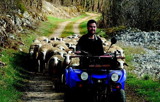 Damien Fraysse, éleveur de brebis dans le Lot.