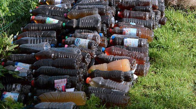 En ramassant des déchets, ils tombent sur 340 bouteilles remplies d'urine