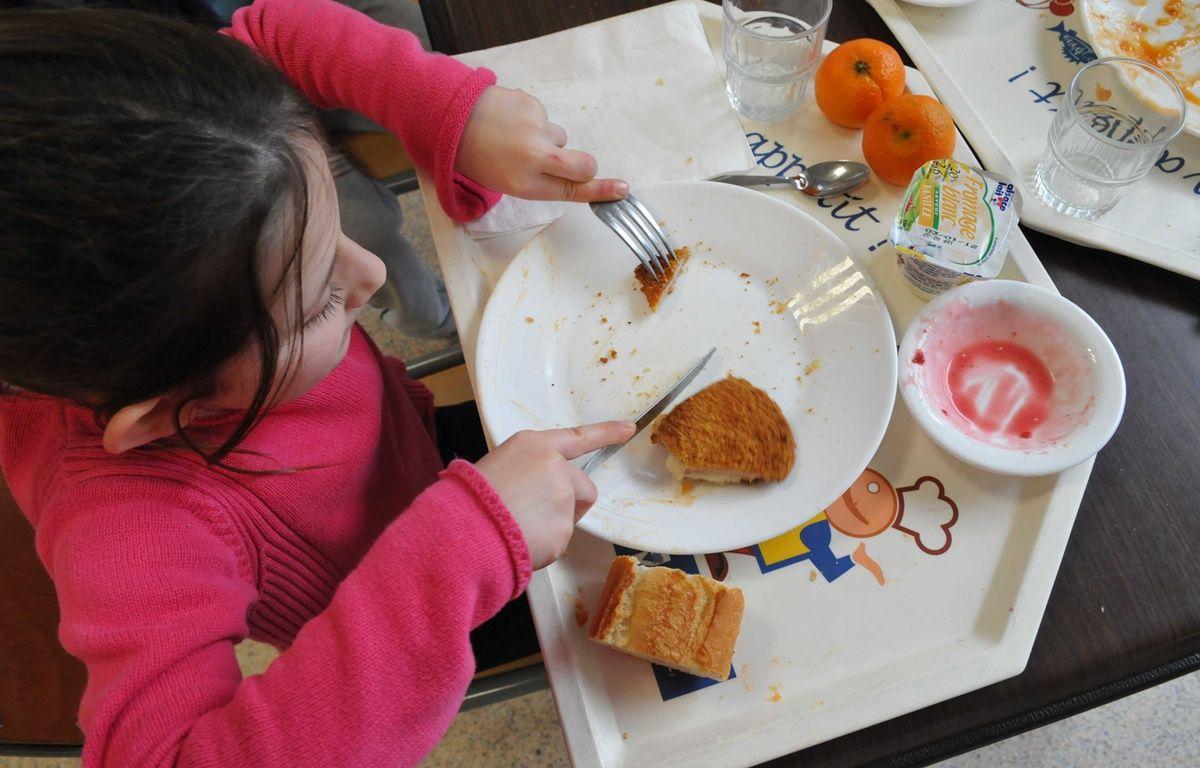 Un enfant en plein repas «bio», dans un cantine scolaire de la ville de Clamart (Hauts-de-Seine), en 2011. –  DURAND FLORENCE/SIPA