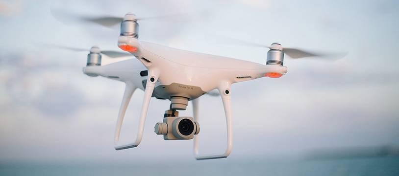 Des drones pour sauver les espèces en voie de disparition en Australie