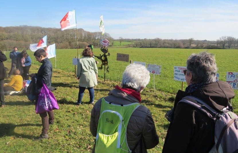 Loire-Atlantique : Le département demande une « évaluation environnementale » du projet de surf park