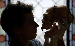 Un humain et un crâne de Néandertalien. (Illustration).