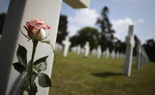 Une rose sur une tombe le 31 mai 2014 au cimetière de Colleville