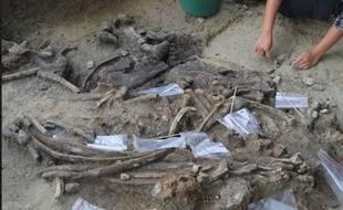 Une équipe de préhistoriens viennent de mettre à jour des traces d'activités humaines vieilles de 709.000 ans sur l'île de Luzon, la principale de l'archipel des Philippines.