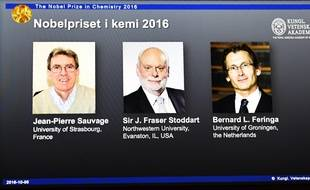 Le prix Nobel de chimie a été attribué mercredi aux chercheurs français Jean-Pierre Sauvage, britannique J. Fraser Stoddart et néerlandais Bernard L. Feringa.