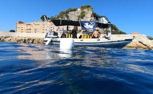 L'association Depth's Guards a mobilisé deux bateaux et douze plongeurs ce samedi au pied de la colline du Château de Nice