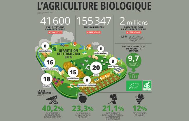L'état des lieux de l'agriculture biologique en France.