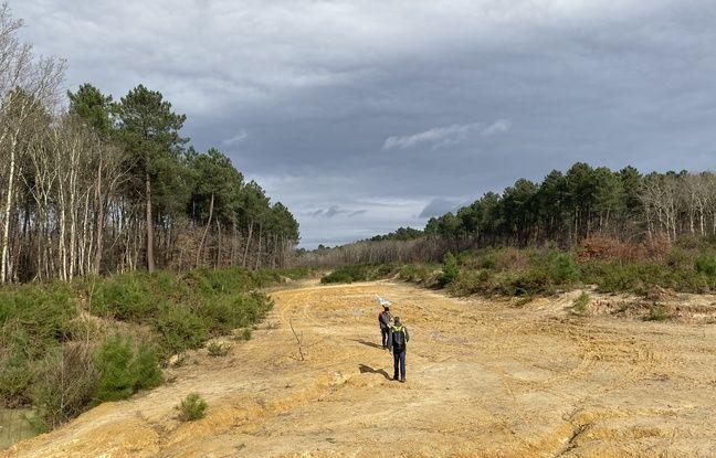 Le projet de déviation routière du Taillan, entre Saint-Aubin-de-Médoc et Arsac, prévoit la construction d'un barreau routier de 8 km.