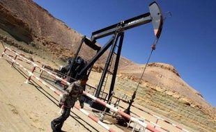 Le gouvernement libyen menace de faire usage de la force pour rétablir l'ordre dans le secteur pétrolier, poumon économique du pays agité par des mouvements de protestation qui ont fait chuter la production de brut.