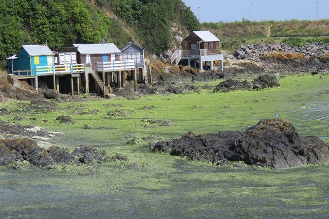Sur la plage du Valais, à Saint-Brieuc, une partie des cabanons sont fermés, l'accès étant interdit.